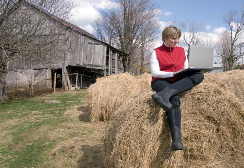 Diseño y despliegue de proyectos de conectividad para entornos rurales despoblados.
